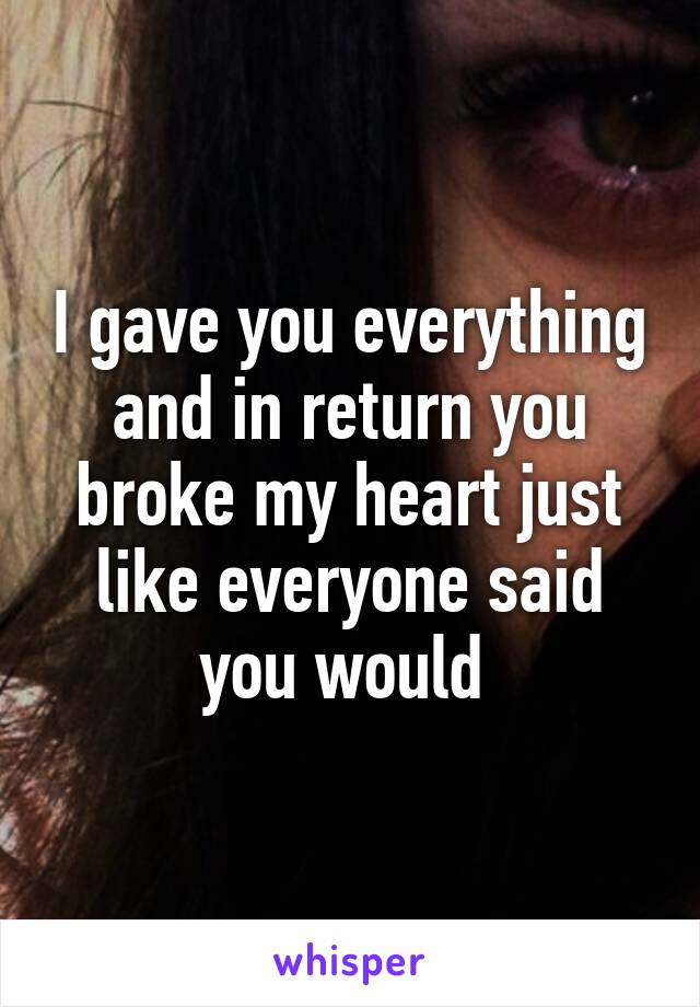 I gave you everything and in return you broke my heart just like everyone said you would