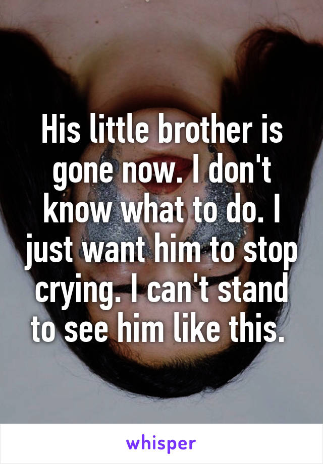 His little brother is gone now. I don't know what to do. I just want him to stop crying. I can't stand to see him like this.