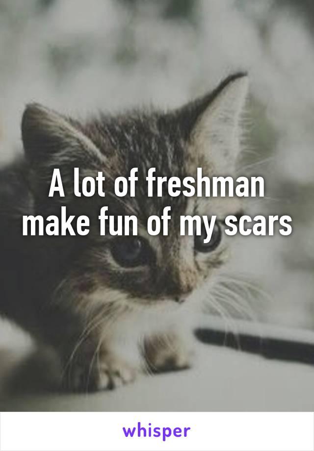 A lot of freshman make fun of my scars