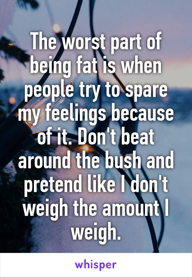 The worst part of being fat is when people try to spare my feelings because of it. Don't beat around the bush and pretend like I don't weigh the amount I weigh.