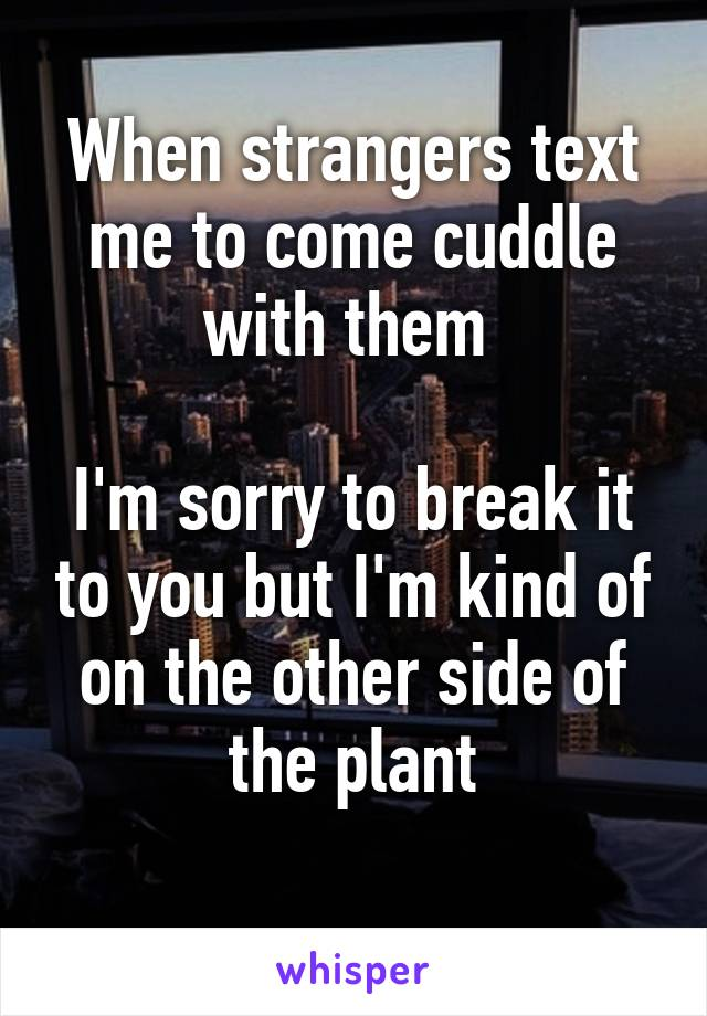 When strangers text me to come cuddle with them   I'm sorry to break it to you but I'm kind of on the other side of the plant