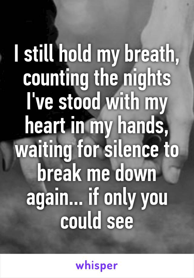 I still hold my breath, counting the nights I've stood with my heart in my hands, waiting for silence to break me down again... if only you could see