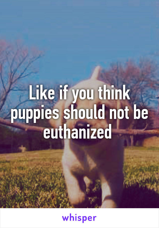 Like if you think puppies should not be euthanized
