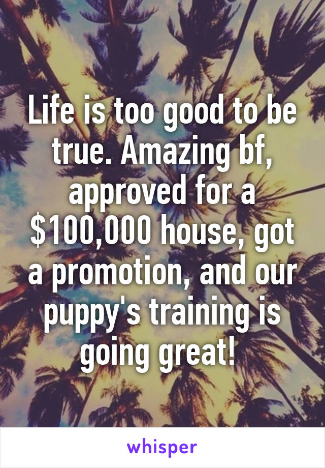 Life is too good to be true. Amazing bf, approved for a $100,000 house, got a promotion, and our puppy's training is going great!