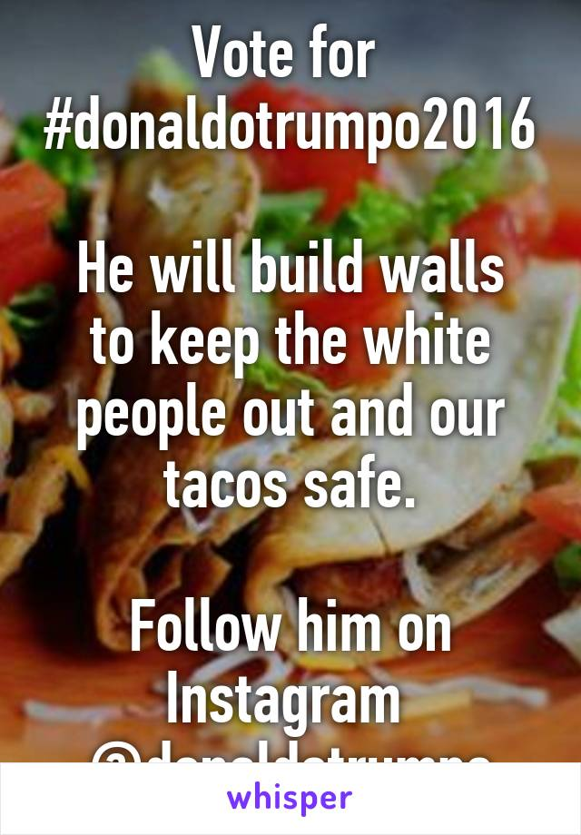 Vote for  #donaldotrumpo2016  He will build walls to keep the white people out and our tacos safe.  Follow him on Instagram  @donaldotrumpo