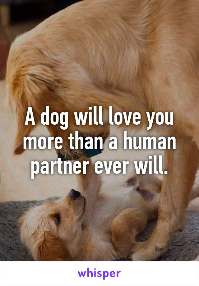 A dog will love you more than a human partner ever will.