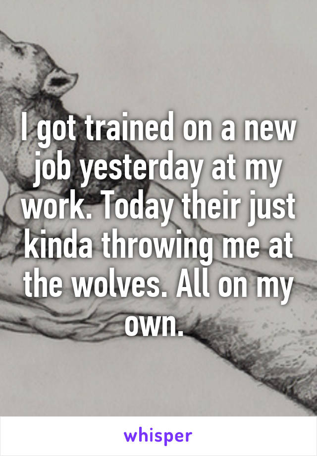 I got trained on a new job yesterday at my work. Today their just kinda throwing me at the wolves. All on my own.
