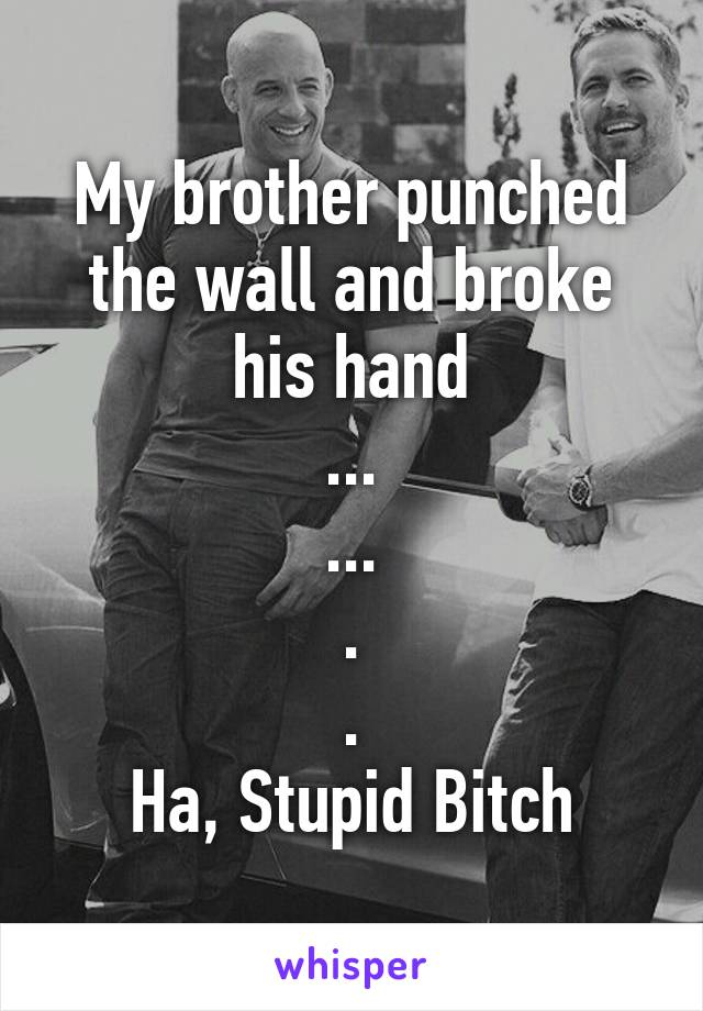 My brother punched the wall and broke his hand ... ... . . Ha, Stupid Bitch