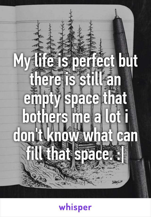 My life is perfect but there is still an empty space that bothers me a lot i don't know what can fill that space. :|