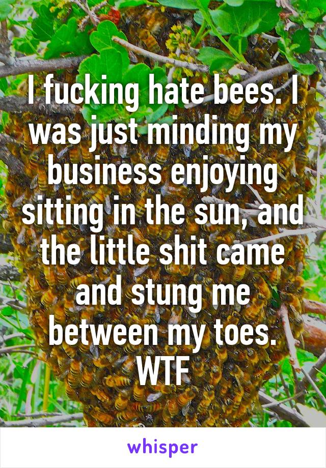 I fucking hate bees. I was just minding my business enjoying sitting in the sun, and the little shit came and stung me between my toes. WTF