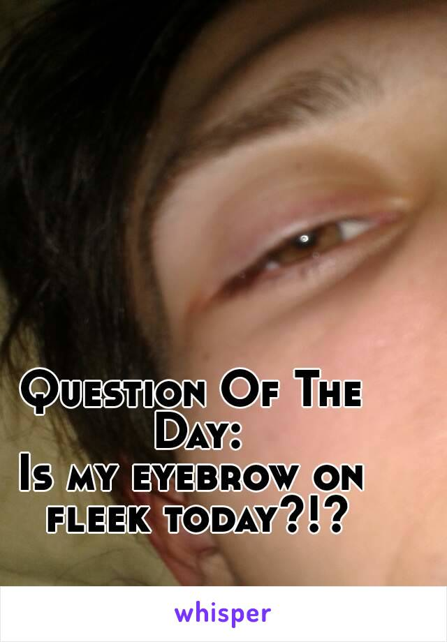 Question Of The Day: Is my eyebrow on fleek today?!?