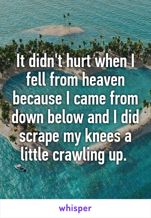 It didn't hurt when I fell from heaven because I came from down below and I did scrape my knees a little crawling up.