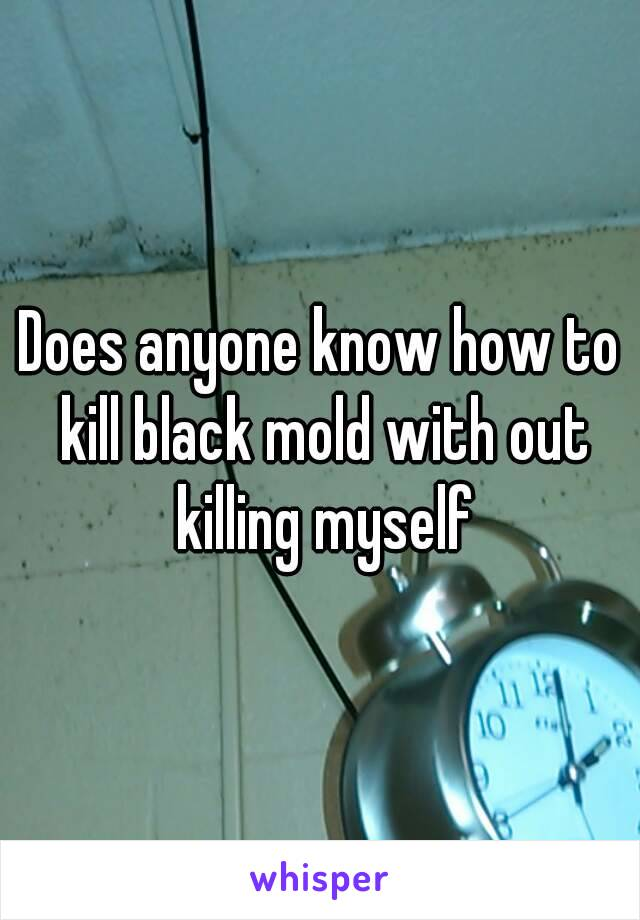 Does anyone know how to kill black mold with out killing myself