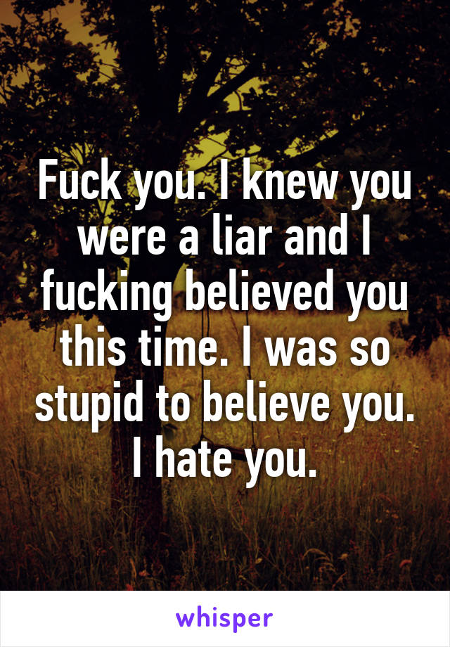 Fuck you. I knew you were a liar and I fucking believed you this time. I was so stupid to believe you. I hate you.