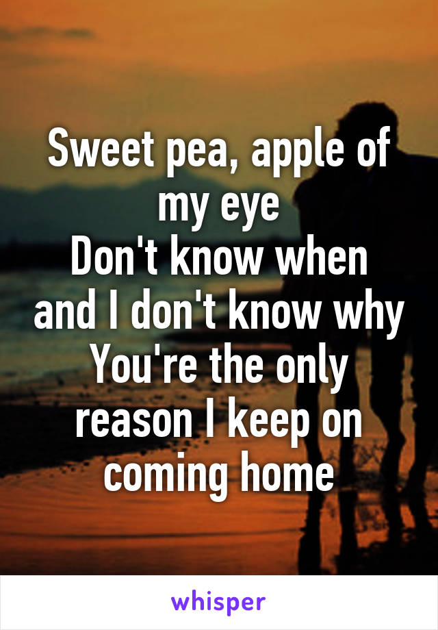Sweet pea, apple of my eye Don't know when and I don't know why You're the only reason I keep on coming home