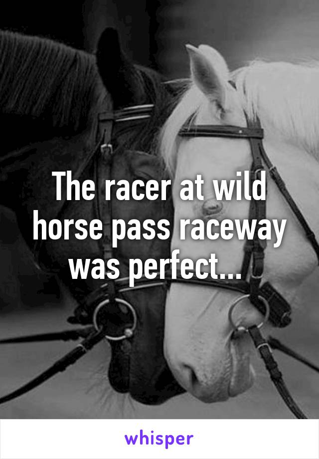 The racer at wild horse pass raceway was perfect...