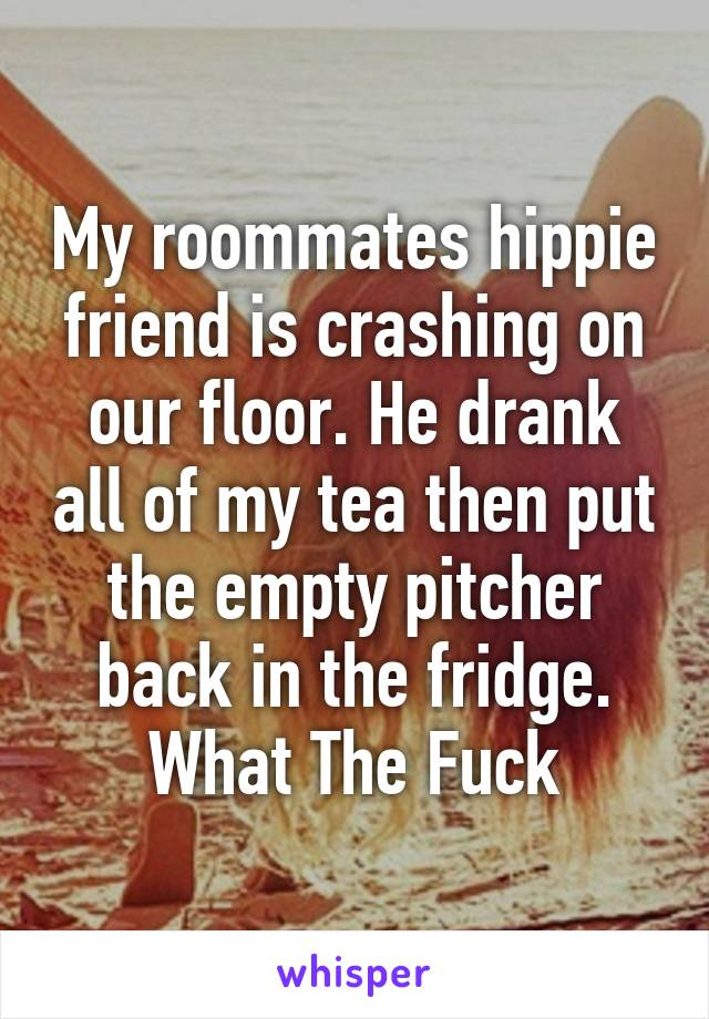 My roommates hippie friend is crashing on our floor. He drank all of my tea then put the empty pitcher back in the fridge. What The Fuck