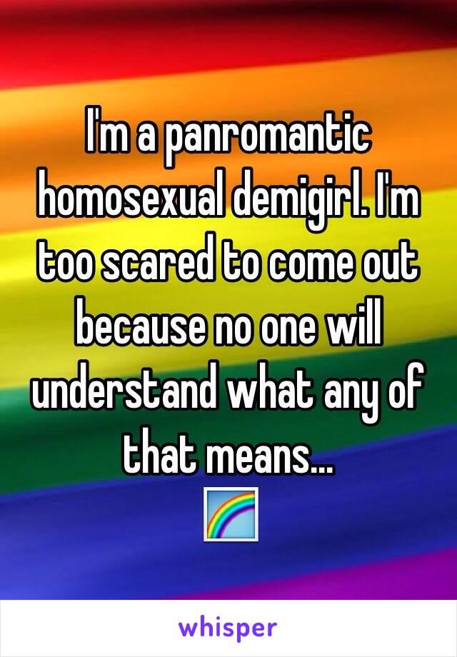 Panromantic homosexual relationships
