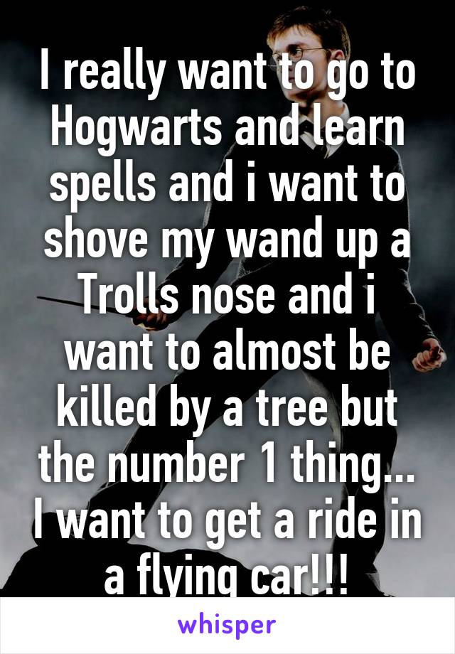 I really want to go to Hogwarts and learn spells and i want to shove my wand up a Trolls nose and i want to almost be killed by a tree but the number 1 thing... I want to get a ride in a flying car!!!