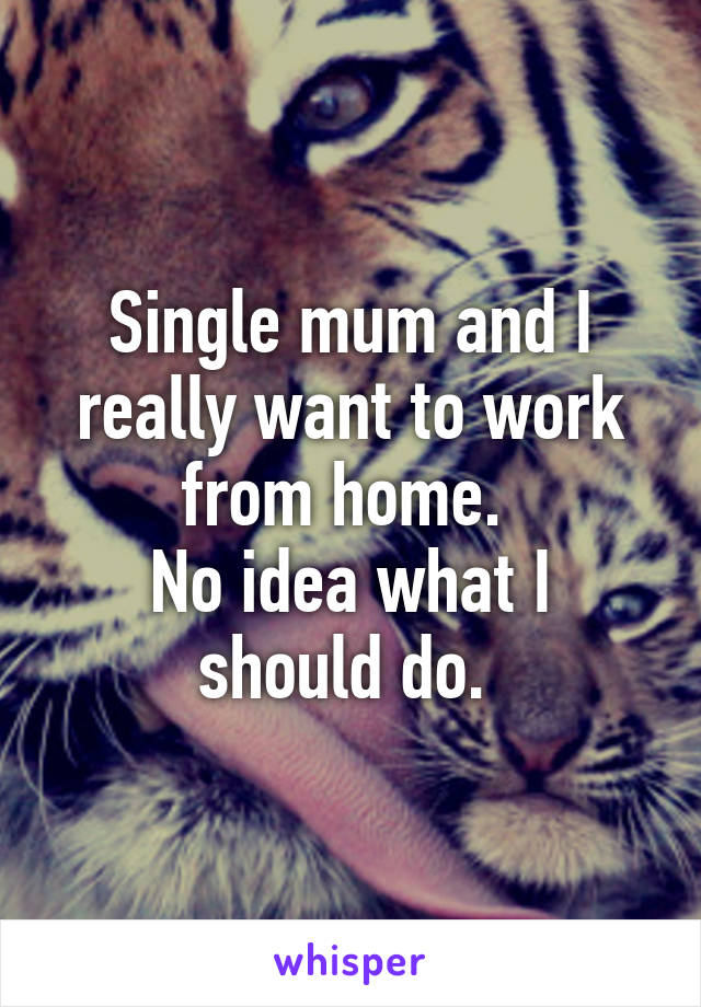 Single mum and I really want to work from home.  No idea what I should do.