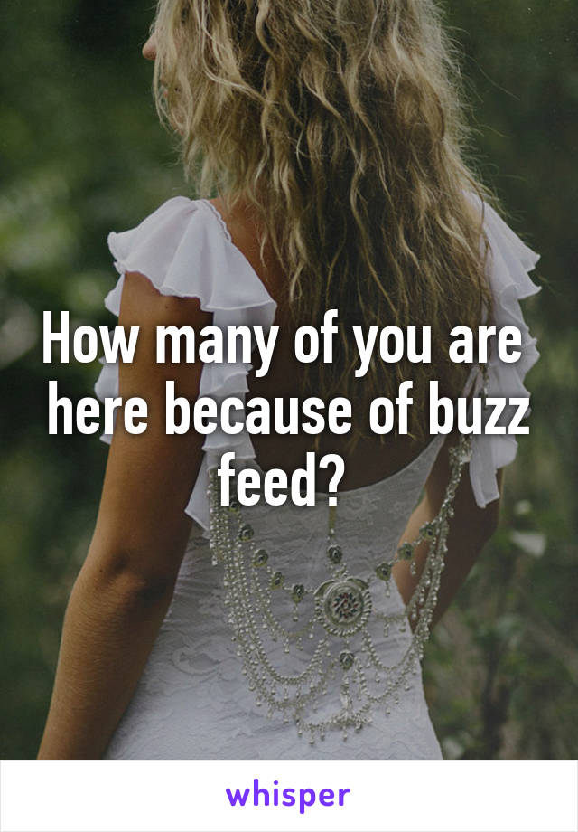 How many of you are  here because of buzz feed?