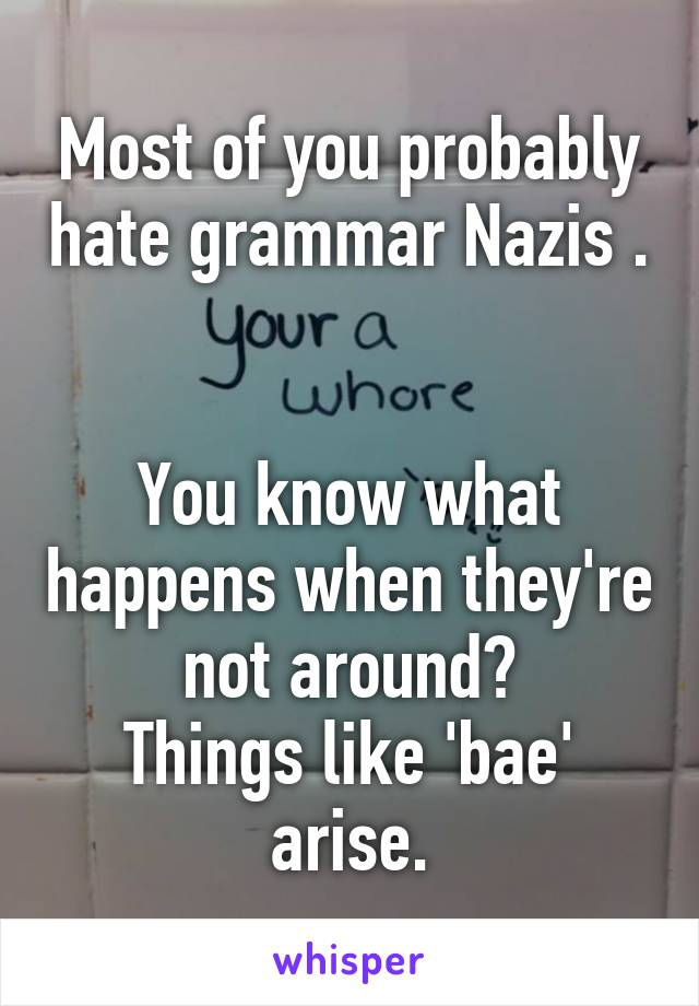 Most of you probably hate grammar Nazis .   You know what happens when they're not around? Things like 'bae' arise.