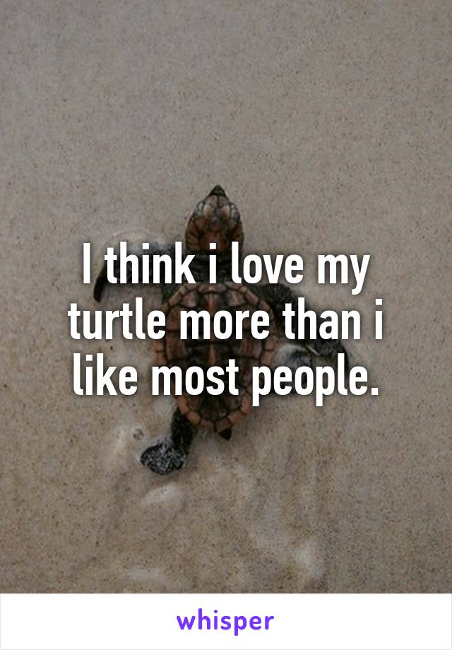 I think i love my turtle more than i like most people.