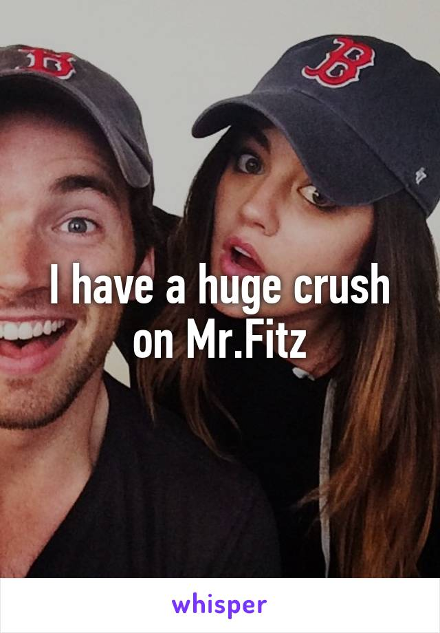 I have a huge crush on Mr.Fitz