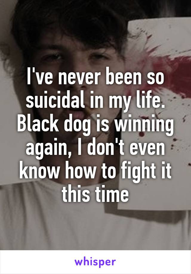 I've never been so suicidal in my life. Black dog is winning again, I don't even know how to fight it this time