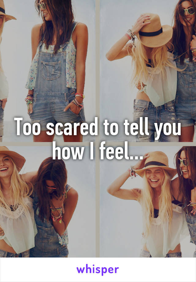 Too scared to tell you how I feel...