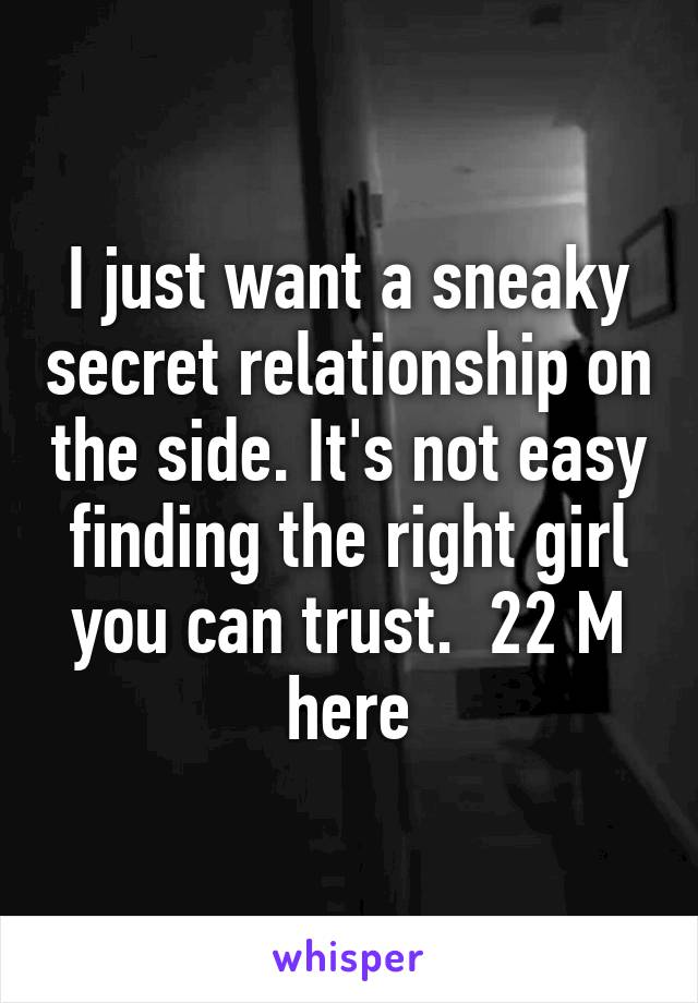 I just want a sneaky secret relationship on the side. It's not easy finding the right girl you can trust.  22 M here