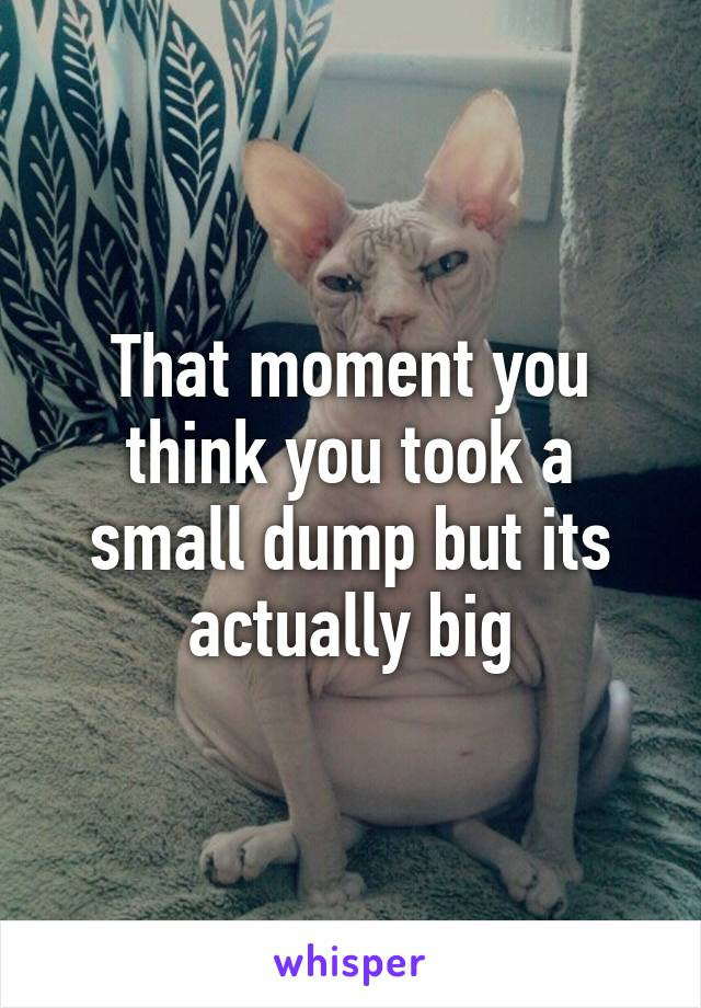 That moment you think you took a small dump but its actually big