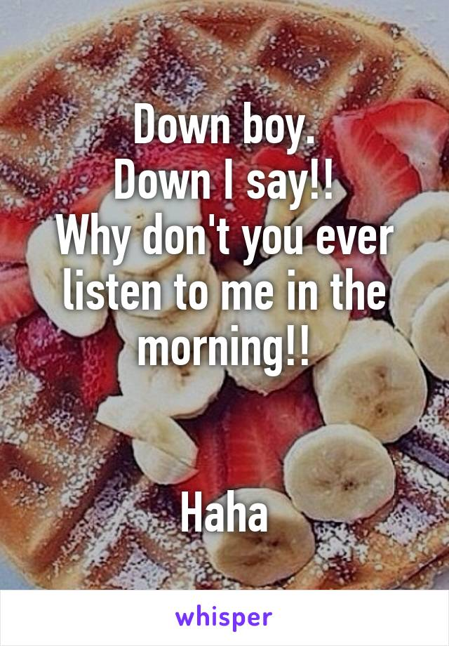 Down boy. Down I say!! Why don't you ever listen to me in the morning!!   Haha