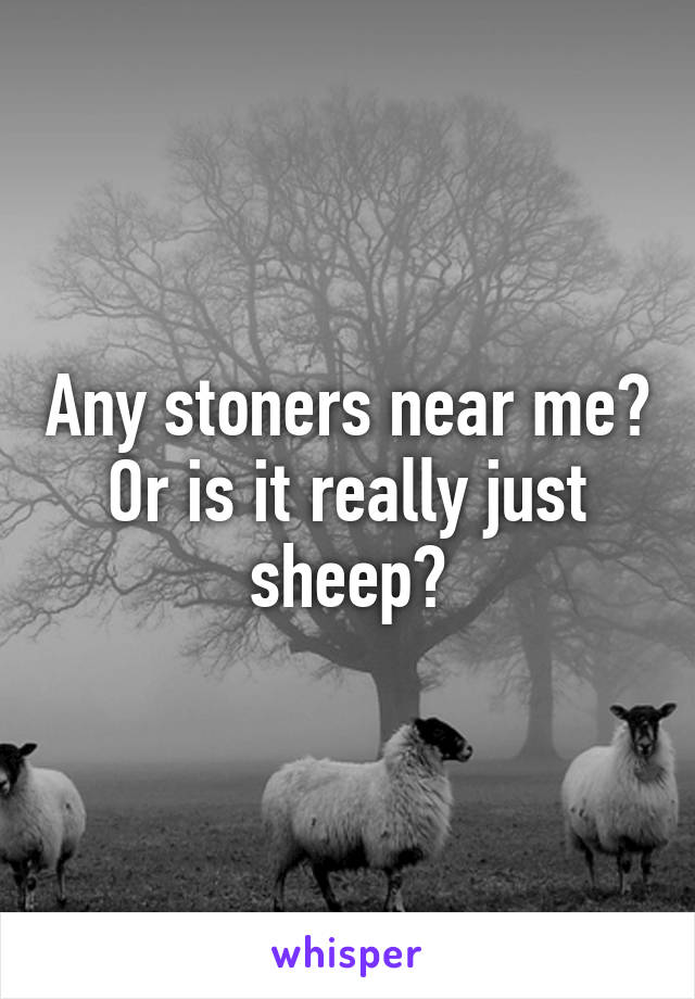 Any stoners near me? Or is it really just sheep?