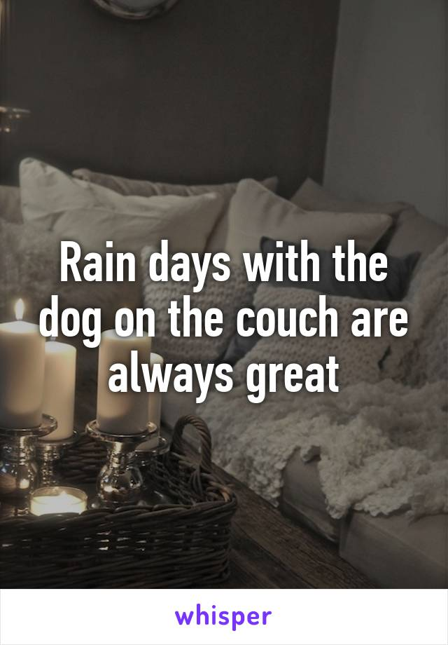 Rain days with the dog on the couch are always great