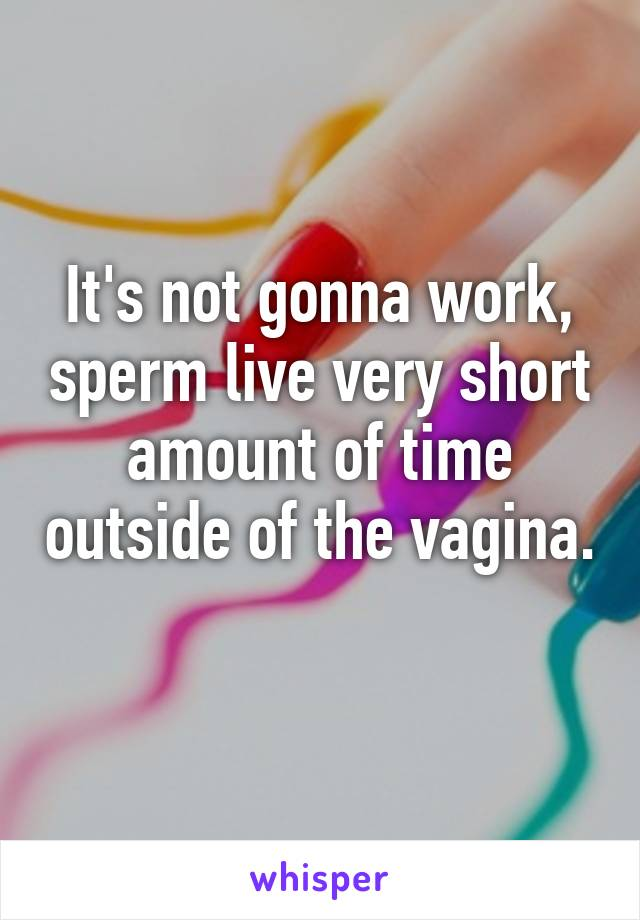Sperm life in the vagina