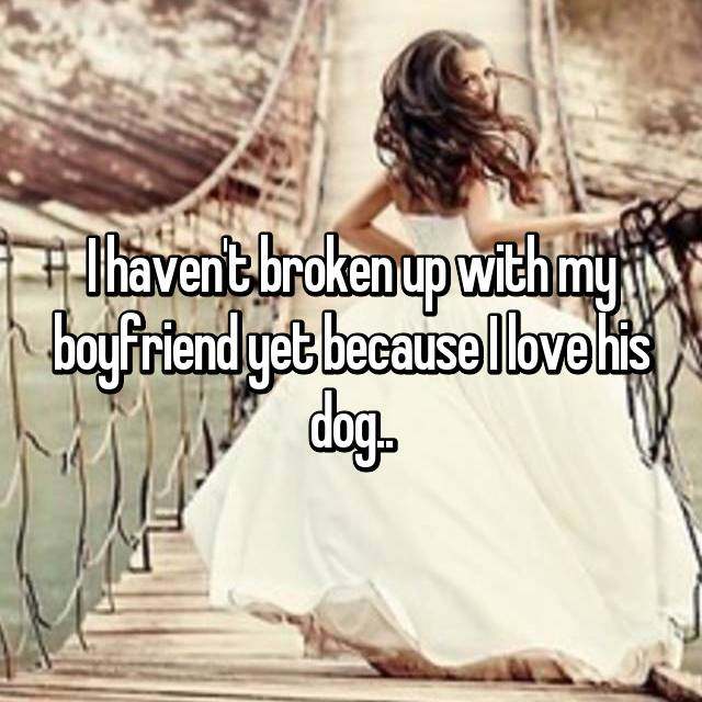 I haven't broken up with my boyfriend yet because I love his dog..