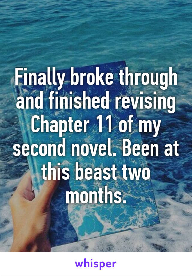 Finally broke through and finished revising Chapter 11 of my second novel. Been at this beast two months.