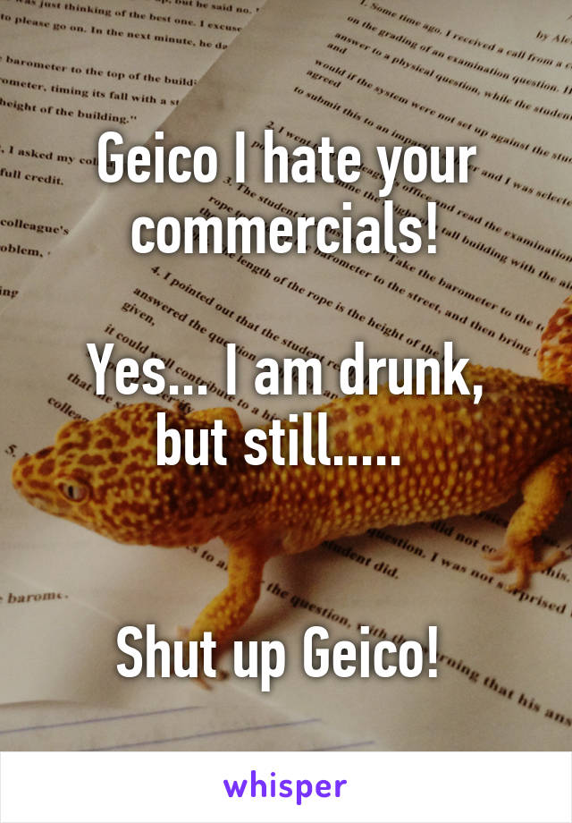 Geico I hate your commercials!  Yes... I am drunk, but still.....    Shut up Geico!