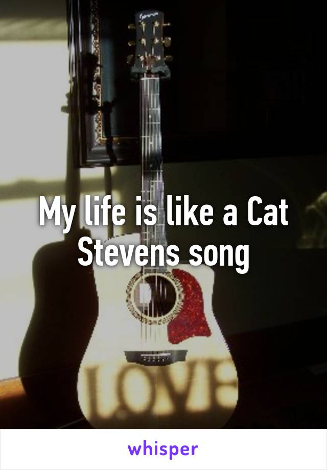 My life is like a Cat Stevens song