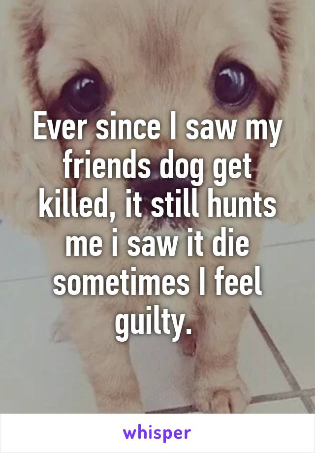 Ever since I saw my friends dog get killed, it still hunts me i saw it die sometimes I feel guilty.