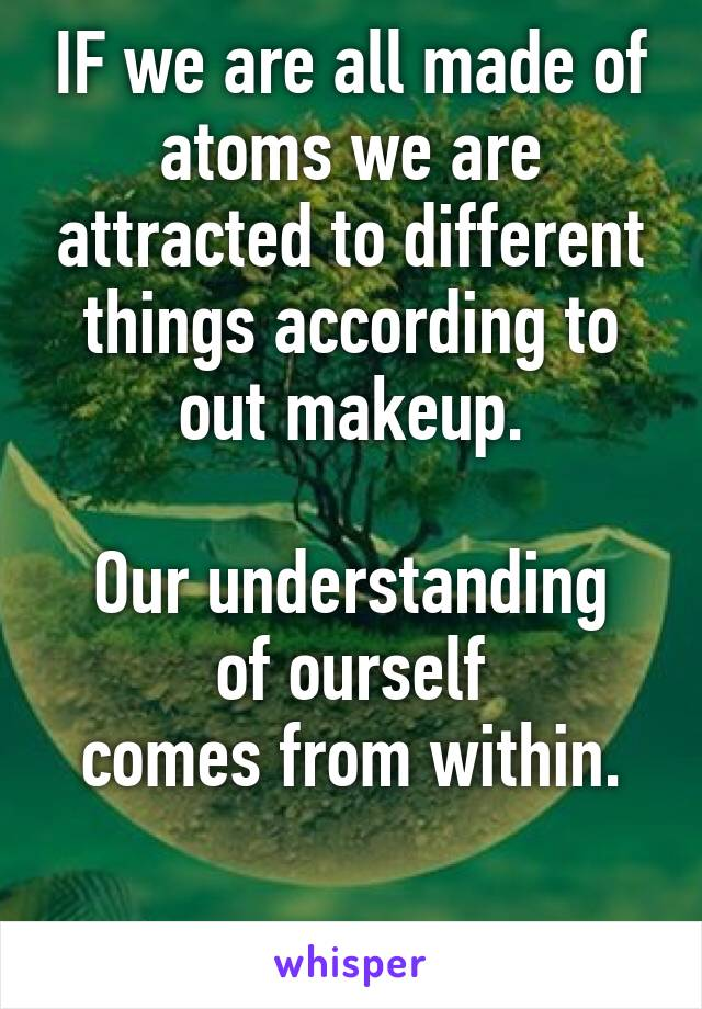 IF we are all made of atoms we are attracted to different things according to out makeup.  Our understanding of ourself comes from within.