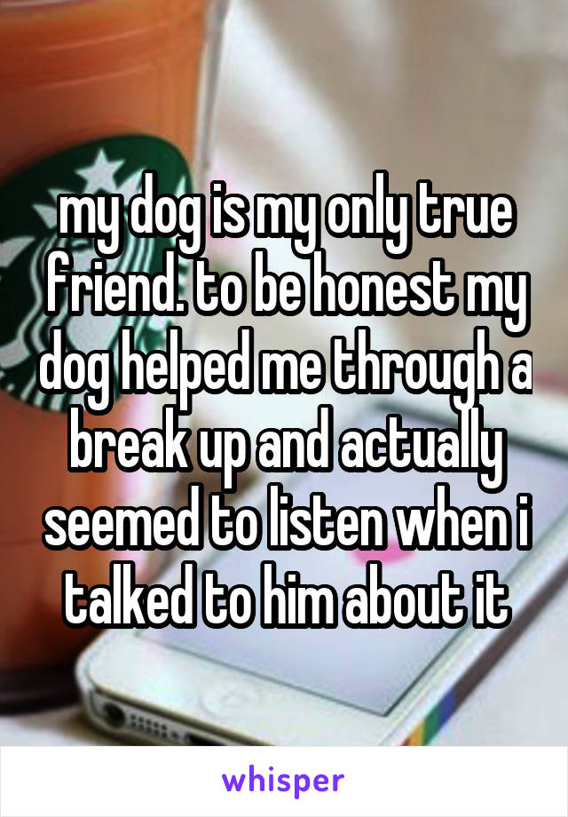 my dog is my only true friend. to be honest my dog helped me through a break up and actually seemed to listen when i talked to him about it