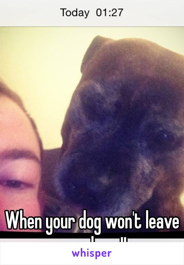 When your dog won't leave you alone !!