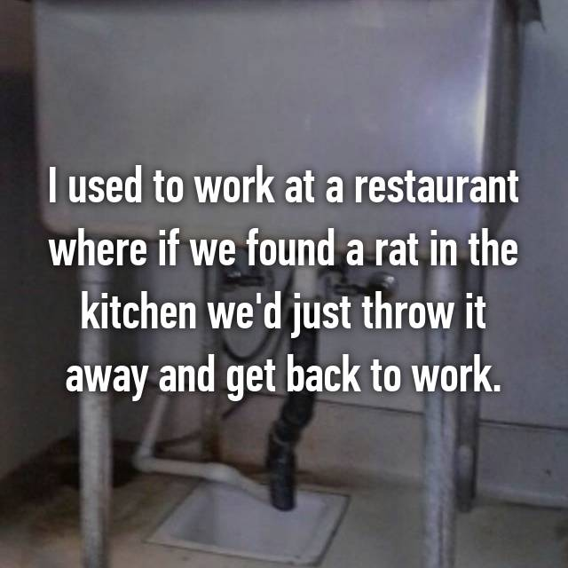 I used to work at a restaurant where if we found a rat in the kitchen we'd just throw it away and get back to work.
