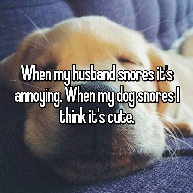 When my husband snores it's annoying. When my dog snores I think it's cute.