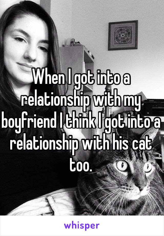 When I got into a relationship with my boyfriend I think I got into a relationship with his cat too.
