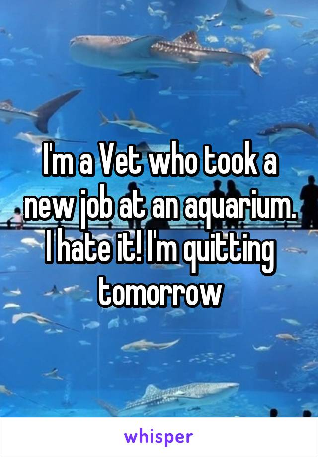 I'm a Vet who took a new job at an aquarium. I hate it! I'm quitting tomorrow