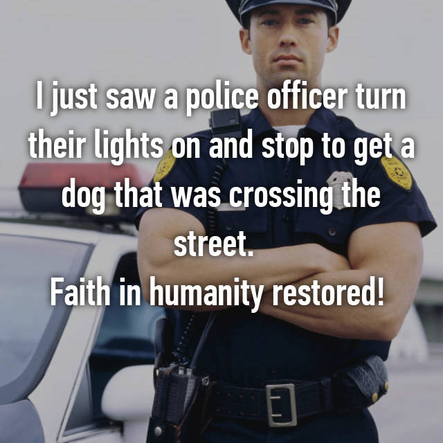 I just saw a police officer turn their lights on and stop to get a dog that was crossing the street.   Faith in humanity restored!