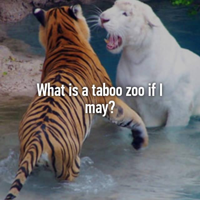 Zoo taboo marshillmusic.merchline.com